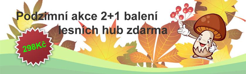 Akce sadba lesních hub 2+1 zdarma